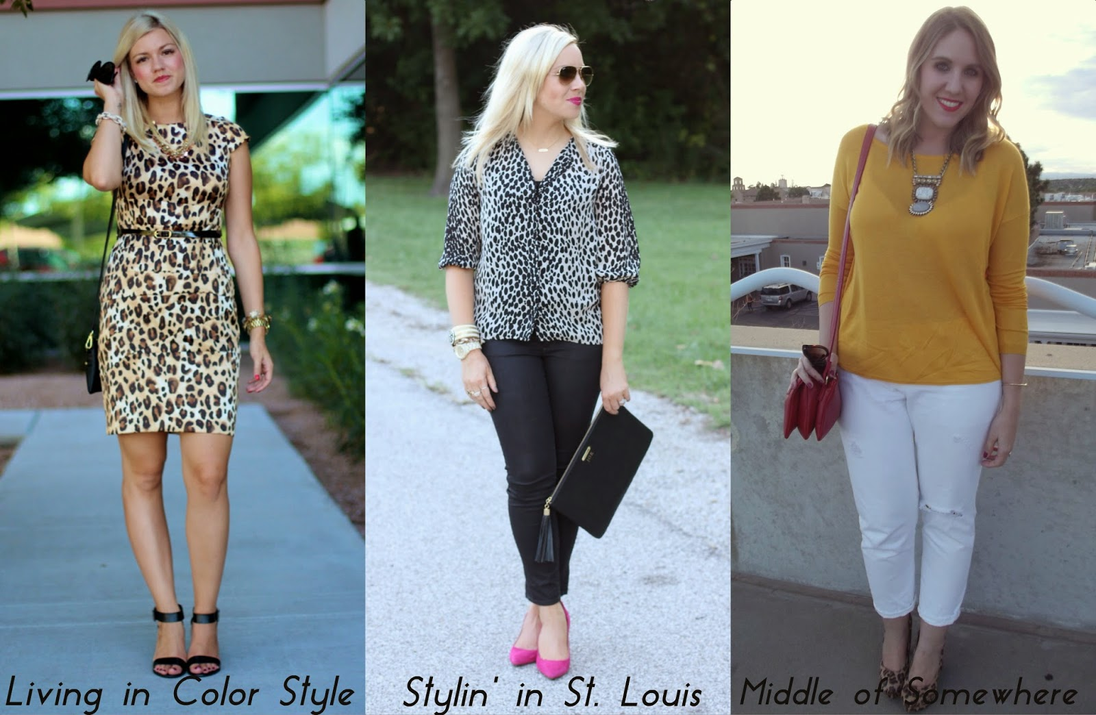 Spotlight Weekly Link-Up | Week 57: Leopard
