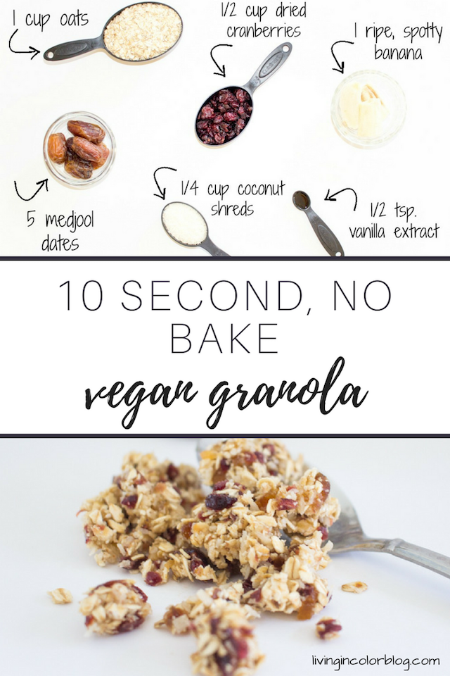 10 Second No Bake Vegan Granola Recipe by lifestyle blogger Elle from Living in Color