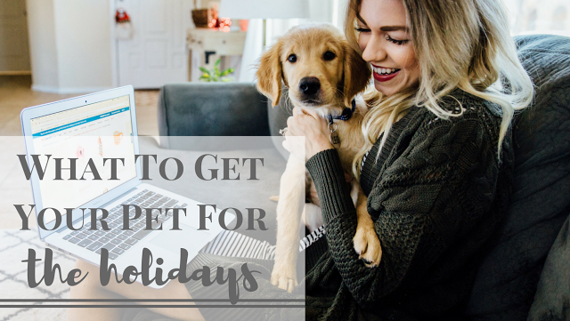 Shopping For Puppy For The Holidays + Pet Gift Guide