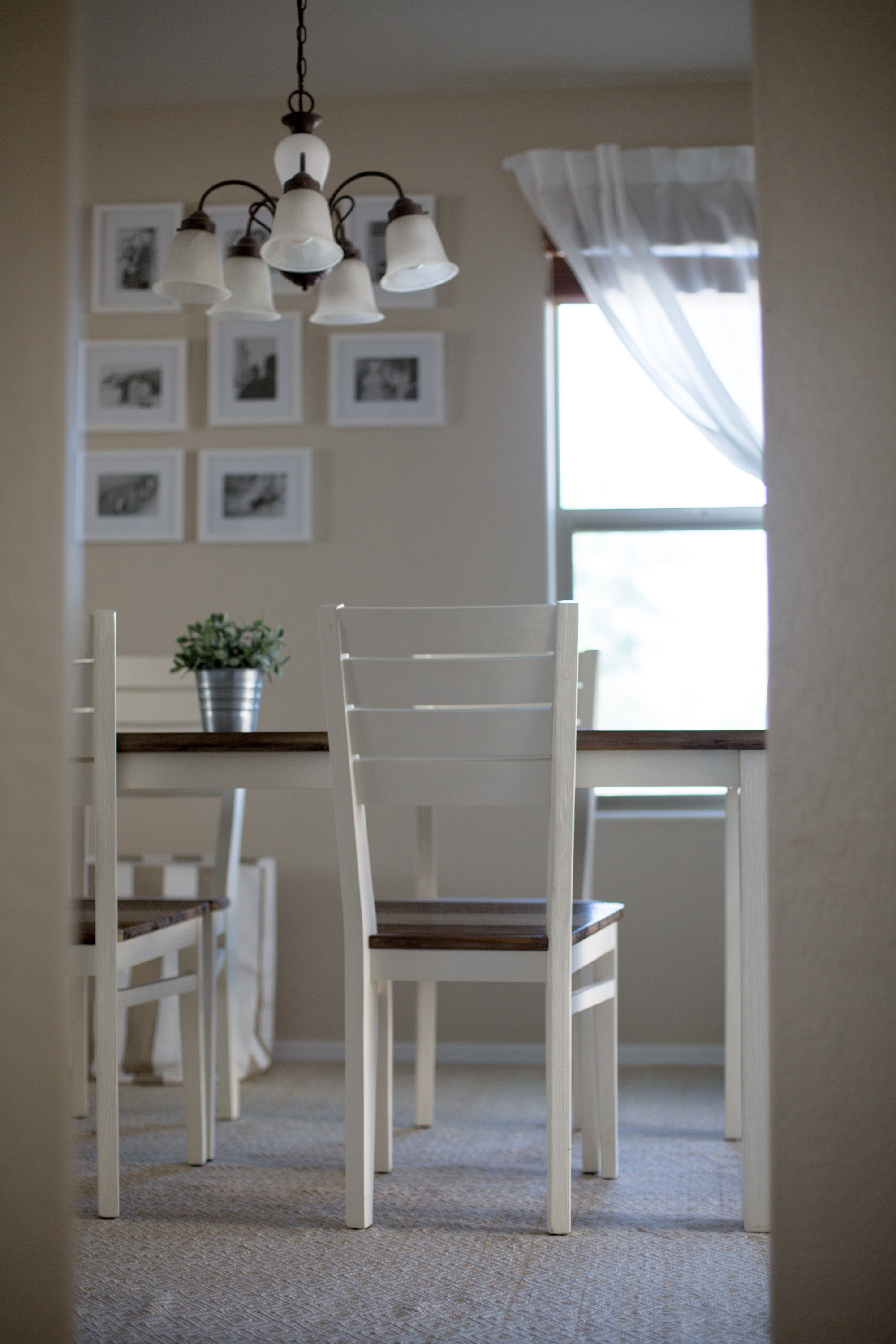 How To Decorate A Minimalist + Eco-Friendly Dining Room