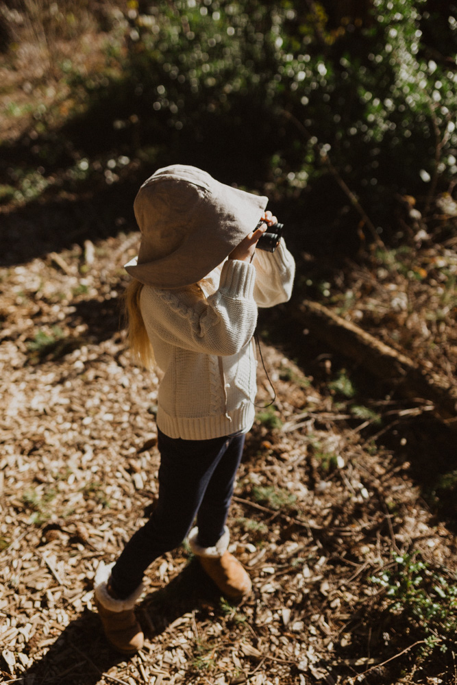 How To Set Up A Backyard Bird-Watching Station For Kids