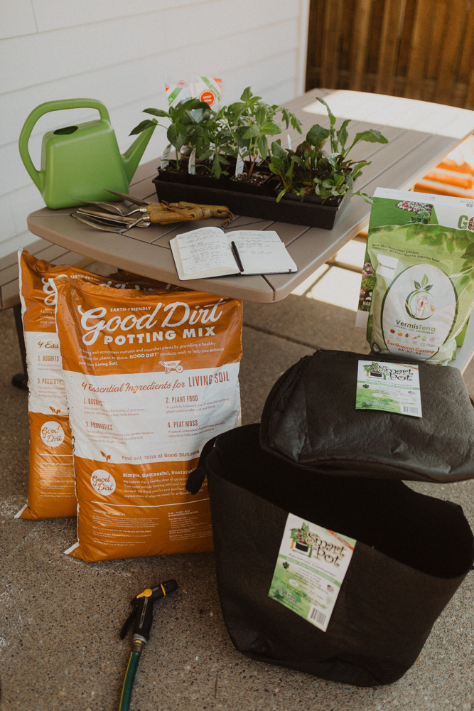What You Need to Start A Small Container Garden
