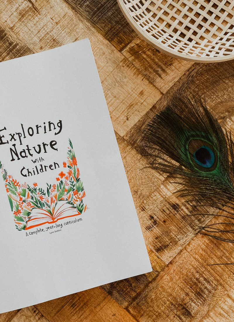 A Look Inside: Exploring Nature With Children Year-Long Nature Curriculum