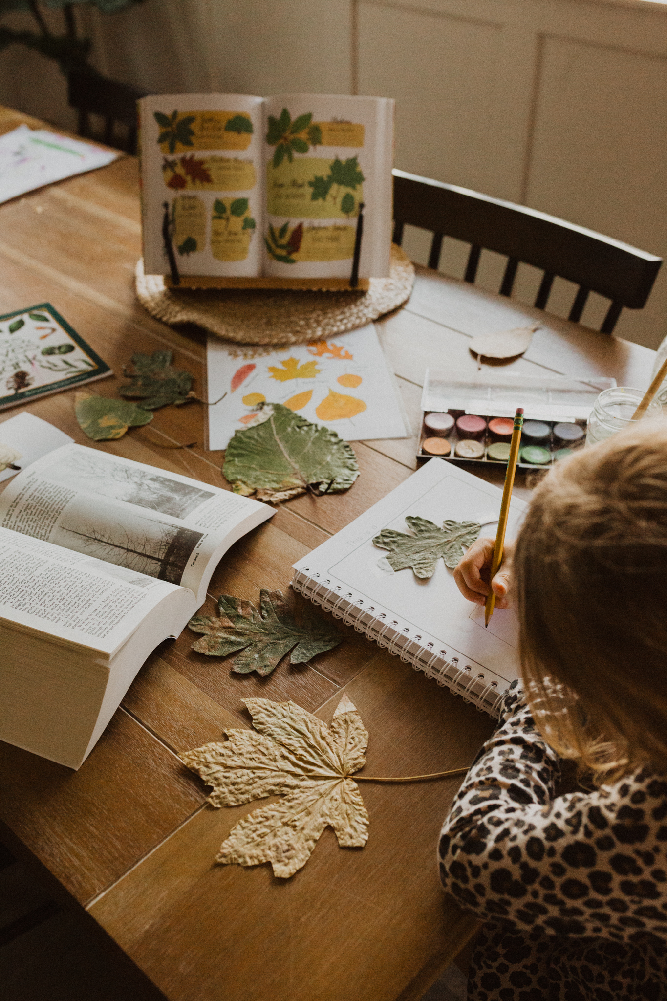 A Day in Our Homeschool Life | Autumn 2020 (Video)